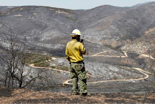 Dustin Klegg, wildfire operations manager with Utah DNR Forestry Land and State Parks looks over a burned mountainside from the Rockport 5 Fire Friday August 16.