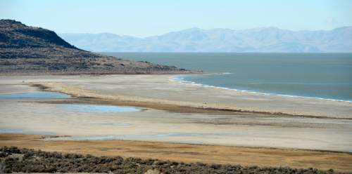 Al Hartmann     The Salt Lake Tribune A view from the shore of Antelope Island looking east toward the Wasatch Mountains shows mudflats that are usually submerged by water of the Great Salt Lake Wednesday January 21.