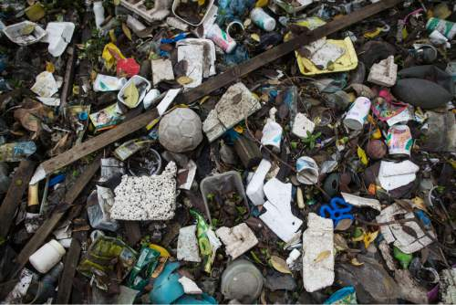 Trash floats on a polluted water channel that flows into the Guanabara Bay during a tour for the press in Rio de Janeiro, Brazil, Tuesday, March 10, 2015. Under pressure from the International Olympic Committee, the government of Rio de Janeiro has turned to a high-technology Dutch firm to help collect floating rubbish in Guanabara Bay, the sailing venue for the 2016 Games. (AP Photo/Felipe Dana)