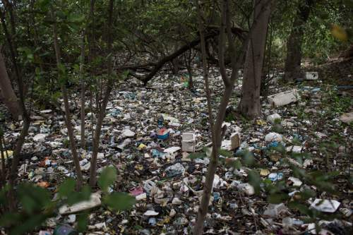 Trash carpets a forested area on the shores  of a polluted water channel that flows into the Guanabara Bay during a tour for the foreign press in Rio de Janeiro, Brazil, Tuesday, March 10, 2015. Researchers have created a system that compiles weather, water-quality data and possibly real-time footage from cameras around the bay to forecast where litter accumulates and travels in the extensive bay of 146 square miles. But environmentalists say the government is not doing enough to fix rampant sewage pollution and that the trash tracking will have zero impact on that. (AP Photo/Felipe Dana)