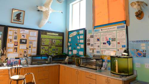 Leah Hogsten     The Salt Lake Tribune The displays at the Kids' Wetlands Learning Center. The Utah Legislature appropriated $1.2 million to help the Utah Division of Wildlife Resources to remodel and expand the Robert N. Hasenyager Great Salt Lake Nature Center at Farmington Bay, March 13, 2015.