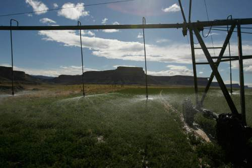 Chris Detrick  |  Tribune file photo Irrigation on Green River rancher Tim Vetere's alfalfa field.
