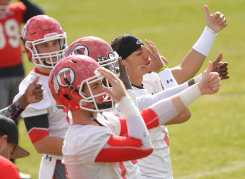 Leah Hogsten     The Salt Lake Tribune Kendal Thompson (right, helmetless) signals the play with Utah's other quarterbacks during an April 2, 2015 practice. Thompson has been credited by teammates for his attention to detail even as he is sidelined while recovering from an ACL injury.