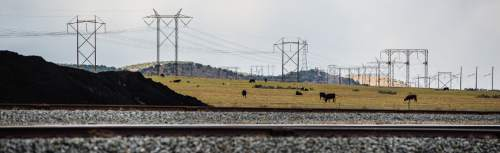 Francisco Kjolseth  |  The Salt Lake Tribune  Cows graze the pastures adjacent to the Levan transfer facility along Interstate 15 south of Nephi. Coal trucked from central Utah piles up at the Levan transfer station south of Nephi, where it is loaded on Union Pacific freight cars bound for California. Utah's Community Impact Board has awarded a $53 million loan to four coal-producing counties to invest in a deep-water port in Oakland, Calif. hoping to connect central Utah commodities with export markets. Bowie Resource Partners already exports about 1 to 3 million tons of coal from its Utah mines.