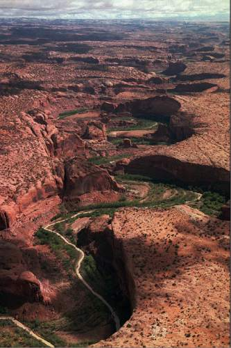 Al Hartmann  |  Tribune file photo  The serpentine Escalante River carves its way through sandstone landscape on its way to Lake Powell about 40 miles away to the south.