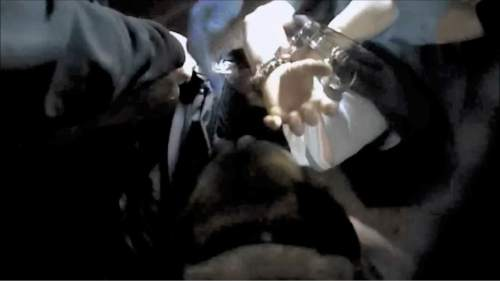 |  Courtesy   A screen grab from the officer body camera video showing a police canine attacking Lee Hoogveldt.
