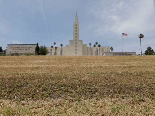 The grass has turned brown in front of the Los Angeles California Temple on Santa Monica Boulevard in Westwood, Calif., Monday, May 11, 2015. California's first Mormon temple is letting its lawn go brown as drought concerns have water users tightening their consumption statewide. (AP Photo/Damian Dovarganes)
