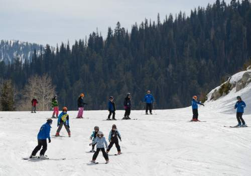 Francisco Kjolseth     The Salt Lake Tribune  Spring skiing conditions appear to come earlier this year as a skiing class makes its way down the bunny slope at Solitude Mountain Resort on Wednesday, March 18, 2015.