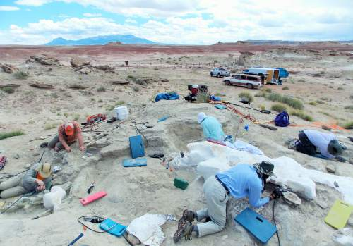 Scott Williams | Courtesy of the Burpee Museum of Natural History  Researchers work to uncover fossils in a dig site in southern Utah.