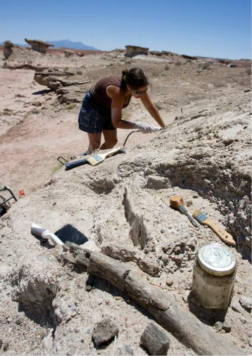 Al Hartmann  |  Tribune file photo The Hanksville-Burpee Dinosaur Quarry near Hanksville is offering free public tours starting Friday through Saturday, June 6, 2015.