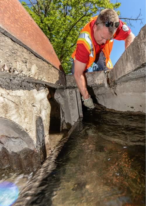 Irrigating Holdouts Keep Water Flowing Through Salt Lake