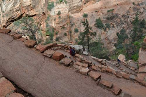Erin Alberty  |  The Salt Lake Tribune Hikers climb Walter's Wiggles, a series of switchbacks ascending out of Refrigerator Canyon en route to Angels Landing.
