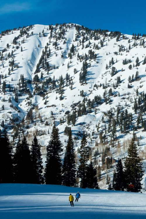 Trent Nelson  |  The Salt Lake Tribune Skiers at the Alta Ski Resort, Wednesday February 11, 2015.