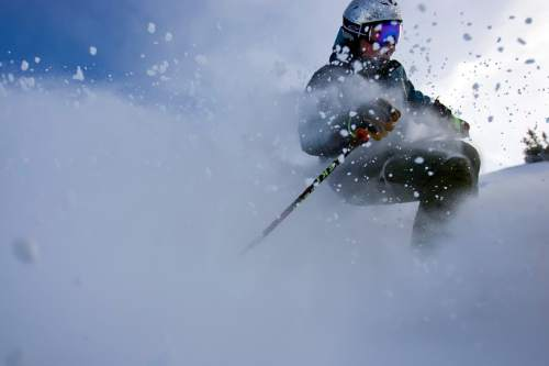 Chris Detrick  |  The Salt Lake Tribune Creating a snow plume on a powder day at Snowbird, William Kerig  is a Salt Lake City-based author whose new book examines extreme skiing through 15-year-old Kye Petersen's trip to Chamonix, France to ski the glacier where his father died a decade earlier.