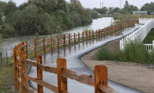 Steve Griffin  |  The Salt Lake Tribune A recreational trail and new vegetation, protected from beavers with a metal fence, flank the east side of the Jordan River in Midvale.