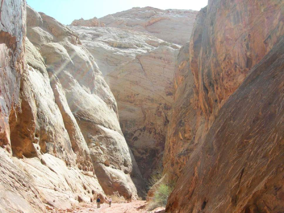 Jason Bergreen | Tribune File Photo   Hiking Grand Wash trail in Capitol Reef National Park.