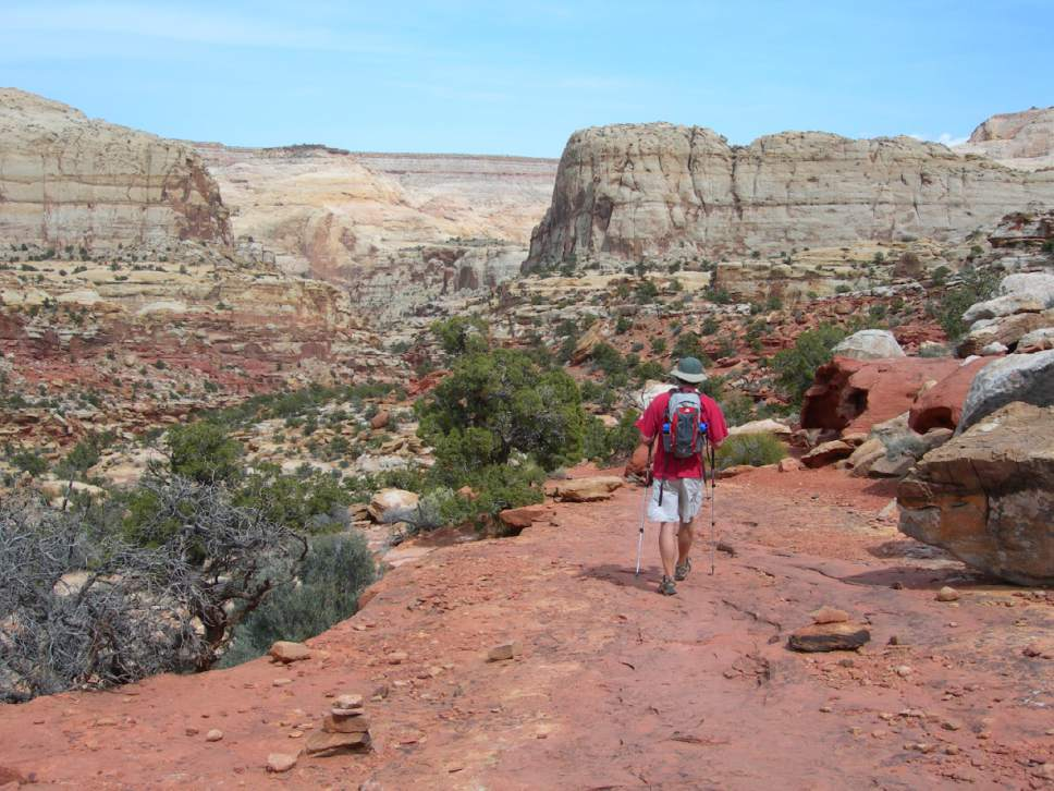 Jason Bergreen | Tribune File Photo     A hiker winds down the Frying Pan Trail toward Cohab Canyon in Capitol Reef.