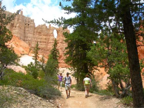 | Tribune File Photo  Hikers walk along the Peakaboo Trail in Bryce Canyon National Park. One of The Windows can be see above.