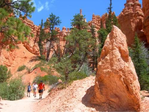 "| Tribune File Photo  Hikers tramp below ""hoodoos"" on the Peekaboo Trail in Bryce Canyon National Park."