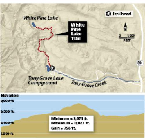 Hike Of The Week White Pine Lake The Salt Lake Tribune - Pine lake prep us map