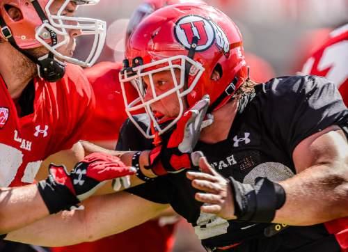 Trent Nelson  |  The Salt Lake Tribune University of Utah football player Hunter Dimick (No. 49), at practice in Salt Lake City, Friday August 14, 2015.