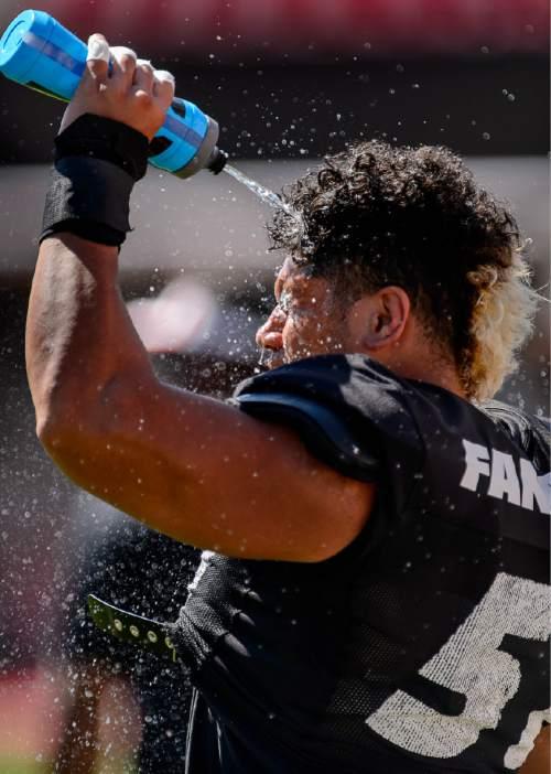 Trent Nelson  |  The Salt Lake Tribune University of Utah football player Jason Fanaika (No. 51), at practice in Salt Lake City, Friday August 14, 2015.