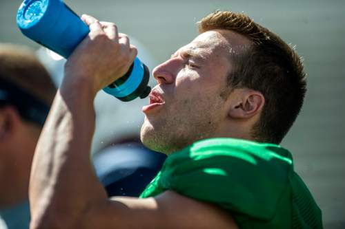 Chris Detrick  |  The Salt Lake Tribune Brigham Young Cougars quarterback Taysom Hill (4) drinks water during a scrimmage at LaVell Edwards Stadium Saturday August 15, 2015.