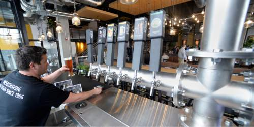 Al Hartmann  |  The Salt Lake Tribune Bartender Curtis Sigoda serves a beer at Wasatch Brew Pub in Sugarhouse. The Utah Brewers Cooperative, which operates Squatters and Wasatch, laid off three top employees recently.