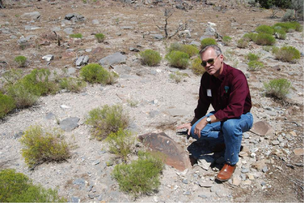 Brian Maffly  |  The Salt Lake Tribune   Mike Sheehan, a BLM archaeologist, describes ancient petroglyphs at Utah's Lake Mountains that have been damaged by gunfire.