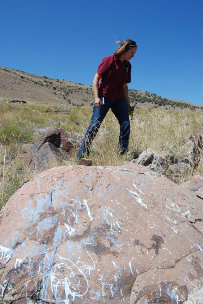 Brian Maffly  |  The Salt Lake Tribune   Bekee Hotzee, former manager for BLMís Salt Lake field office, examines rocks where target shooters blasted cans of paint.