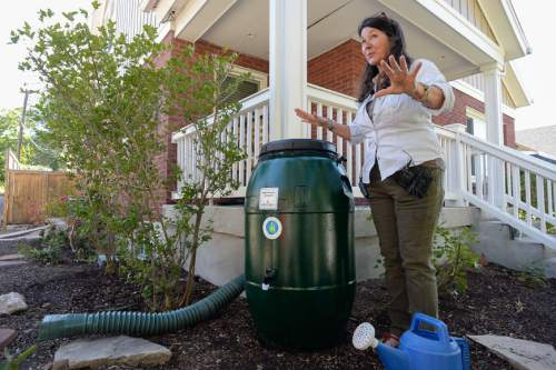 Francisco Kjolseth | The Salt Lake Tribune Stephanie Duer, city Water Conservation Manager, demonstrates the ease of installing the newly available 60-gallon rain barrel. Salt Lake City rolled out their Rain Barrel Initiative to build on the free Water Check Program, and to encourage and assist customers in making efficient use of the area's shared and limited water resources.