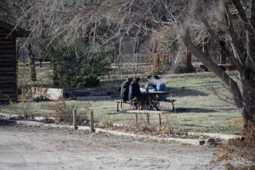 Four women have a picnic at Cottonwood Park in Colorado City, Arizona, in one of a series of photographs found on a memory card and alleged to have come from an FLDS church security team.