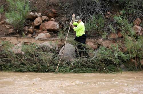 A member of a search and rescue team searches along the Virgin River Wednesday, Sept. 16, 2015, in Zion National Park, near Springdale, Utah. Seven hikers who entered a narrow desert canyon for a day of canyoneering became trapped when a flash flood filled the chasm with water, killing at least five of them in Zion National Park in southern Utah, officials said Wednesday.   (AP Photo/Rick Bowmer)