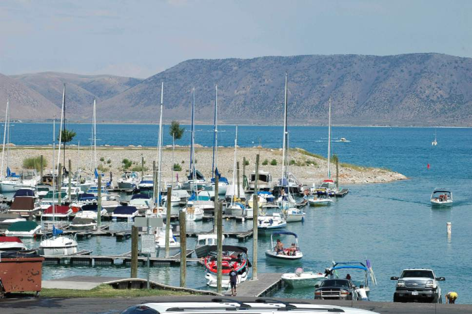 |  Tribune File Photo  The Bear Lake Marina is a popular and busy place during the summer months.