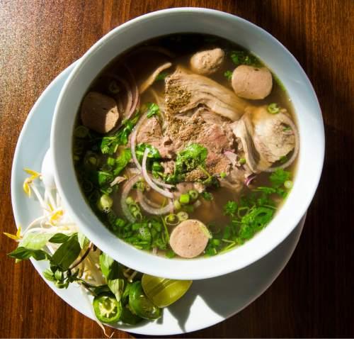 Rick Egan  |  The Salt Lake Tribune Combination (meatball, brisket, steak)  pho at Little Saigon, a new Vietnamese restaurant in Sugar House.