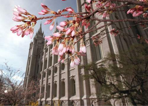 Al Hartmann  |  Tribune File Photo  Flowering trees are opening their blossoms just in time for Spring Conference on Temple Square. March 31, 1998.