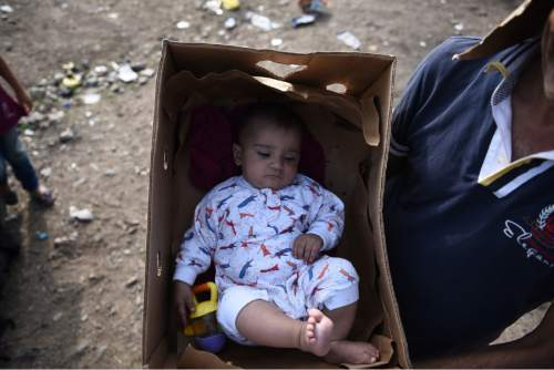 A man uses a cardboard box to carry a baby in the northern Greek village of Idomeni, Sunday, Sept. 20, 2015. More than 2,000 refugees and economic migrants wait at the small village of about 100 inhabitants every day to be let into Macedonia, from where they continue through Serbia and Hungary to seek asylum in wealthier European countries. (AP Photo/Giannis Papanikos)
