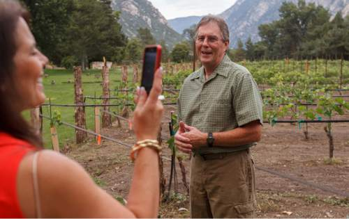Trent Nelson  |  The Salt Lake Tribune  Winemaker Michael Knight tours the replanted vineyard at La Caille restaurant in Sandy on Aug. 8, 2012.