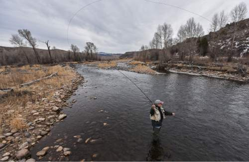 Francisco Kjolseth | The Salt Lake Tribune Brady Willison on Tuesday fishes a stretch of the Upper Provo that cuts through the 7,000-acre Victory Ranch, a luxury destination near Francis. Until a Nov. 4 court ruling invalidating Utah's restrictive stream access law, such streams were not available to anglers without property owners' permission. Stream access advocates successfully sued Victory Ranch, claiming that the landowners' practice of keeping non-guests off the river violates an easement the public has to stream beds. But without further guidance from the court, the scope of that easement is not clear, lawyers say. Victory Ranch insists the ruling should be stayed pending its appeal, which it expects to win.