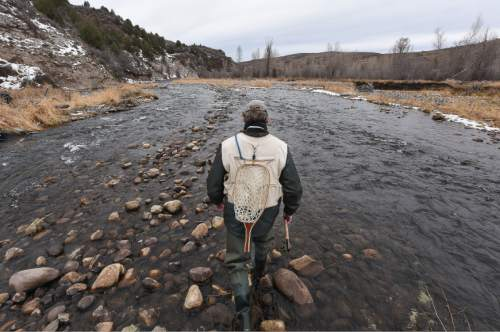 Francisco Kjolseth | The Salt Lake Tribune Brady Willison on Tuesday walks along a stretch of the Upper Provo that cuts through the 7,000-acre Victory Ranch, a luxury destination near Francis. Until a Nov. 4 court ruling invalidating Utah's restrictive stream access law, such streams were not available to anglers without property owners' permission. Willison ventured onto the property curious of how things might have changed since he last fished the area before it became private property years ago.