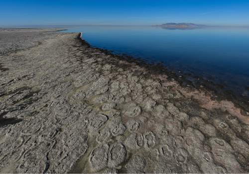 Francisco Kjolseth | The Salt Lake Tribune Researchers gather at The Great Salt Lake to study small rock like structures formed by cyanobacteria known as microbialites. Once exposed to the sun the structures dry and collapse as seen along the shoreline. These structures cover about 386 square miles, nearly 23 percent of the lake's bed, and offer a glimpse of what the Earth was like for its first 3 billion years.
