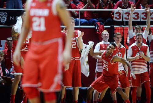 Steve Griffin  |  The Salt Lake Tribune  The Utah bench celebrates as they open up a big lead in during first half action in the Utah versus BYU men's basketball game at the Huntsman Center in Salt Lake City, Wednesday, December 2, 2015.