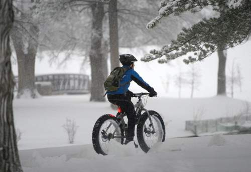 Al Hartmann  |  The Salt Lake Tribune Monday morning  was a nightmare for those commuting to work by car in Salt Lake City as the snow falls Monday morning Dec. 14.  It wasn't easy for those on foot either. This bicyclist in Liberty Park had no problems with fat tires.