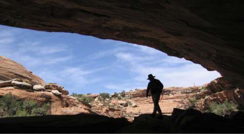 Al Hartmann  |  Tribune file photo  Hiker explores an alcove in a sandstone canyon in the Cedar Mesa area in San Juan County. The mesa is loaded with Anasazi Indian sites. This is among the areas that would be affected by draft legislation that Rep. Rob Bishop intends to unveil Wednesday.