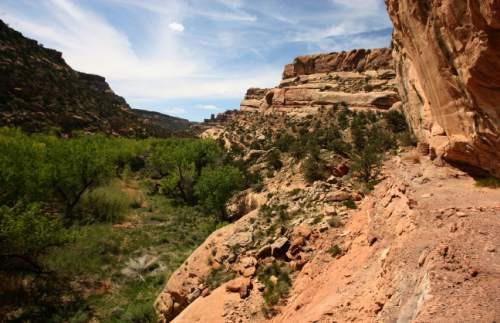Leah Hogsten  |  Tribune file photo  Arch Canyon in San Juan County. This is among the areas that would be affected by draft legislation that Rep. Rob Bishop intends to unveil Wednesday.