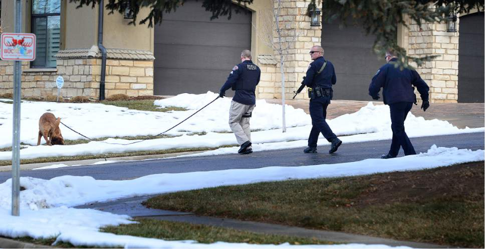 Scott Sommerdorf   |  The Salt Lake Tribune A Unified Police officer works a search of the neighborhood with a search dog and other officers. Police at the scene of an officer-involved shooting, in Holladay, Sunday, January 17, 2016.