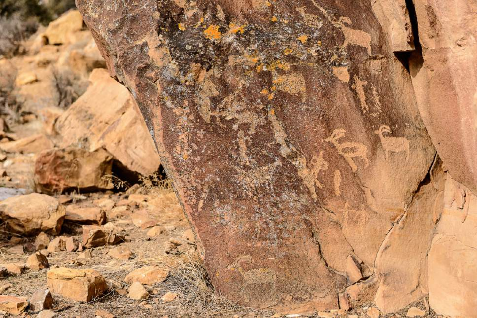 Trent Nelson  |  The Salt Lake Tribune Petroglyphs at First Site in Nine Mile Canyon, Tuesday January 19, 2016.