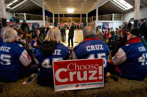 Supporters listen to Republican presidential candidate, Sen. Ted Cruz, R-Texas speaks at a campaign event at High Point Bulls Oswald Barn, Tuesday, Jan. 26, 2016, in Osceola, Iowa. (AP Photo/Jae C. Hong)