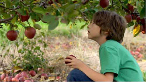 "| Courtesy Sundance Film Festival  A still from the film ""Newtown"" which will be part of the 2016 Sundance Film Festival lineup."