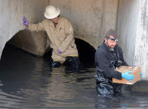Al Hartmann     The Salt Lake Tribune Brian Minchey, storm water inspector with South Salt Lake City Public Works, right, takes water samples with Utah Dept. of Environmental Quality member at a cluster of three culverts that coverage with Millcreek at about 700 East and 3300 South on Friday morning.